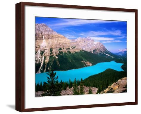 Overhead of Peyto Lake and Mountains, Summer, Banff National Park, Canada-David Tomlinson-Framed Art Print