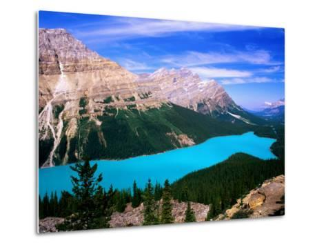 Overhead of Peyto Lake and Mountains, Summer, Banff National Park, Canada-David Tomlinson-Metal Print