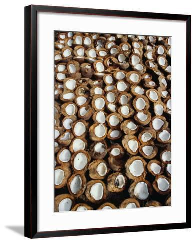 Coconuts Drying Beside Road in Candidasa, Candidasa, Bali, Indonesia-Richard I'Anson-Framed Art Print