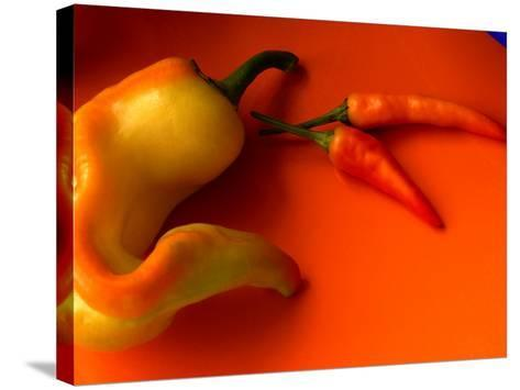 Chilli Peppers in Varying Shades on an Orange Plate, Australia-John Hay-Stretched Canvas Print