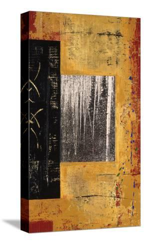 Untitled-Mary Calkins-Stretched Canvas Print