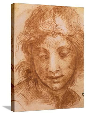 Head of a Young Woman, Drawing by Andrea Del Sarto, Uffizi Gallery, Florence-Andrea del Sarto-Stretched Canvas Print
