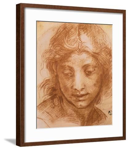 Head of a Young Woman, Drawing by Andrea Del Sarto, Uffizi Gallery, Florence-Andrea del Sarto-Framed Art Print