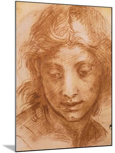Head of a Young Woman, Drawing by Andrea Del Sarto, Uffizi Gallery, Florence-Andrea del Sarto-Mounted Giclee Print