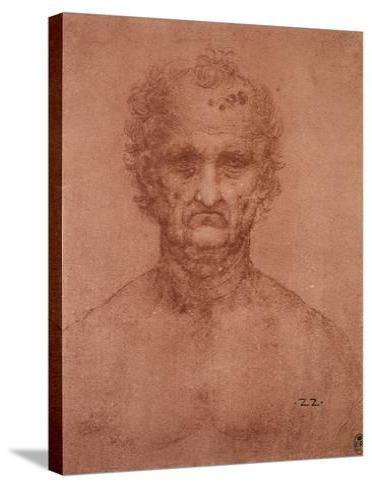 Head of an Old Man, Drawing, Royal Library, Windsor-Leonardo da Vinci-Stretched Canvas Print