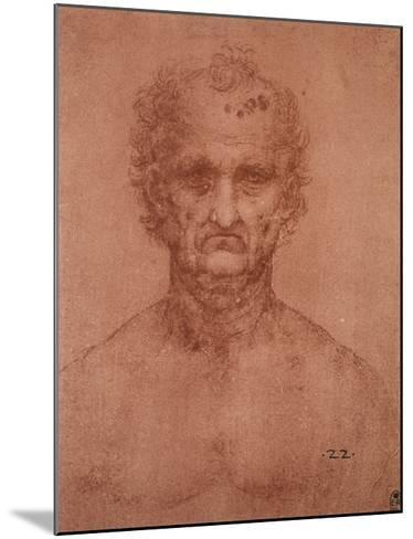 Head of an Old Man, Drawing, Royal Library, Windsor-Leonardo da Vinci-Mounted Giclee Print
