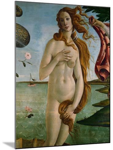 Birth of Venus (Detail of Venus), 1486, Tempera on Canvas-Sandro Botticelli-Mounted Giclee Print