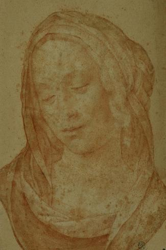 Portrait of a Woman with Veil-Lorenzo di Credi-Stretched Canvas Print