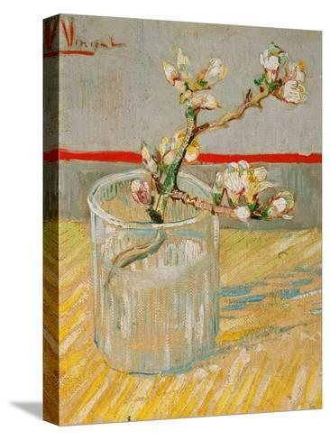 Blossoming Almond Branch in a Glass, c.1888-Vincent van Gogh-Stretched Canvas Print