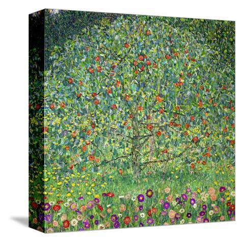 Apple Tree, 1912-Gustav Klimt-Stretched Canvas Print