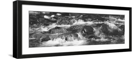 Rapid Stream, Great Smoky Mountains National Park, North Carolina, USA--Framed Art Print
