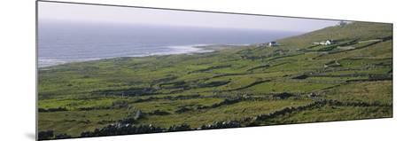 Field, Donegal, Republic of Ireland--Mounted Photographic Print