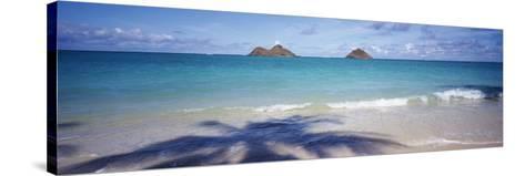 Shadow of a Tree on the Beach, Lanikai Beach, Oahu, Hawaii, USA--Stretched Canvas Print