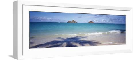 Shadow of a Tree on the Beach, Lanikai Beach, Oahu, Hawaii, USA--Framed Art Print