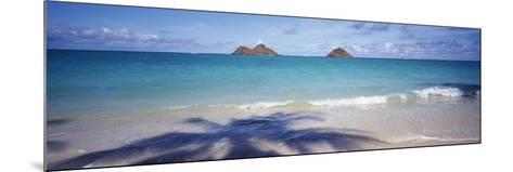 Shadow of a Tree on the Beach, Lanikai Beach, Oahu, Hawaii, USA--Mounted Photographic Print