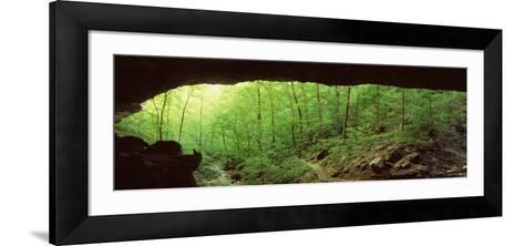 Forest, Cobb Cave, Lost Valley, Ozarks, Arkansas, USA--Framed Art Print