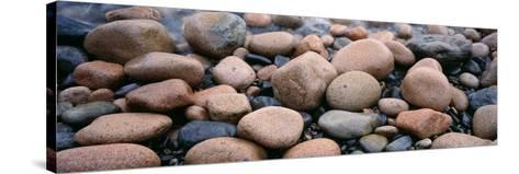 Rocks, Acadia National Park, Maine, USA--Stretched Canvas Print