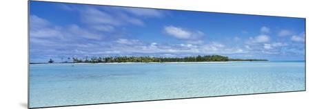 Trees on an Island, Rangiroa, French Polynesia--Mounted Photographic Print