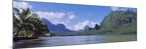 Palm Trees on the Beach, Moorea, French Polynesia--Mounted Photographic Print