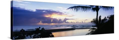 Palm Tree on the Beach, Wailua Bay, Kauai, Hawaii, USA--Stretched Canvas Print