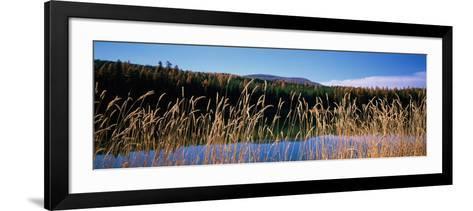 Reflection of Hills on Water, Rainy Lake, Montana, USA--Framed Art Print