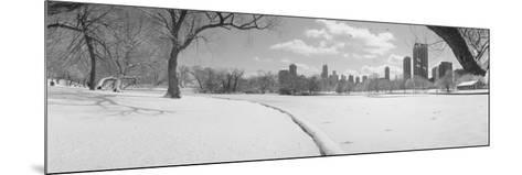 Lincoln Park, Chicago, Illinois, USA--Mounted Photographic Print