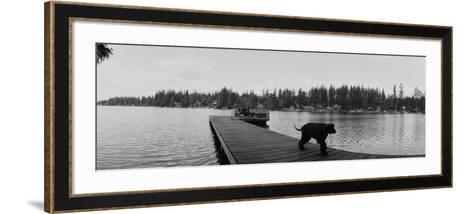 Dog Walking on the Pier, Bellevue, Washington State, USA--Framed Art Print