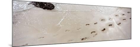 Footprints on the Beach, Railay Beach, Krabi, Thailand--Mounted Photographic Print
