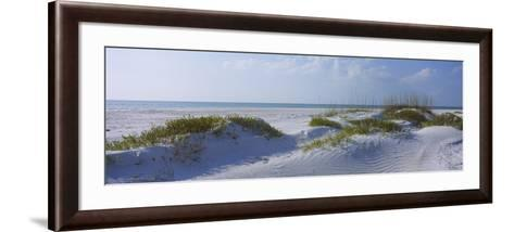 Grass on the Beach, Lido Beach, Lido Key, Sarasota, Florida, USA--Framed Art Print