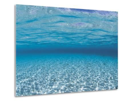 Sandy Seabed Underwater View, Indo-Pacific-Jurgen Freund-Metal Print