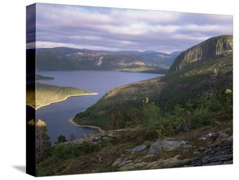 Late Evening Light Over Norwegian Fjord, Lausvnes, Nord-Trondelag, Norway, Europe-Pete Cairns-Stretched Canvas Print