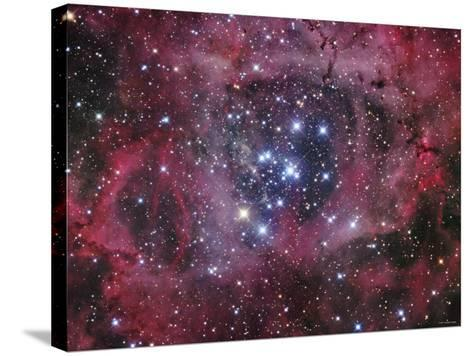 NGC 2244-Stocktrek Images-Stretched Canvas Print