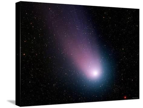 Comet C/2001 Q4 (NEAT)-Stocktrek Images-Stretched Canvas Print
