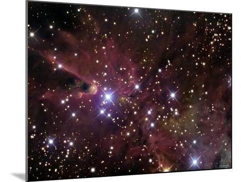 The Cone Nebula and Christmas Tree Cluster-Stocktrek Images-Mounted Photographic Print