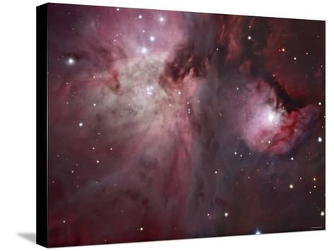 A View of the Trapezium Region, Which Lies in the Heart of the Orion Nebula-Stocktrek Images-Stretched Canvas Print