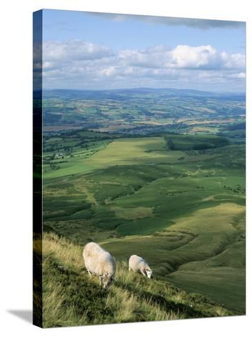 View North from Hay Bluff, with Distant Hay on Wye in Valley, Powys, Wales, United Kingdom-Richard Ashworth-Stretched Canvas Print