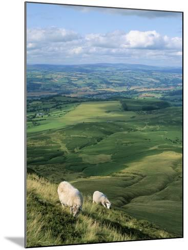 View North from Hay Bluff, with Distant Hay on Wye in Valley, Powys, Wales, United Kingdom-Richard Ashworth-Mounted Photographic Print