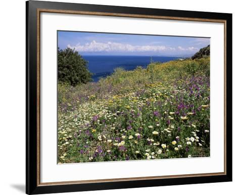 April Spring Flowers, Zingaro Nature Reserve, Northwest Area, Island of Sicily, Italy-Richard Ashworth-Framed Art Print