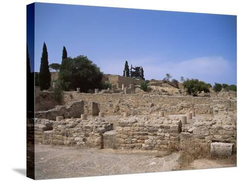 Remains of Roman Villas, Carthage, Unesco World Heritage Site, Tunisia, North Africa, Africa-Nelly Boyd-Stretched Canvas Print