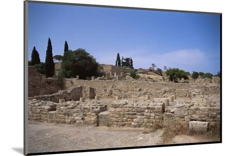 Remains of Roman Villas, Carthage, Unesco World Heritage Site, Tunisia, North Africa, Africa-Nelly Boyd-Mounted Photographic Print
