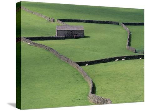 Stone Barn and Dry Stone Walls, Gunnerside, Swaledale, Yorkshire, England, United Kingdom-Jean Brooks-Stretched Canvas Print