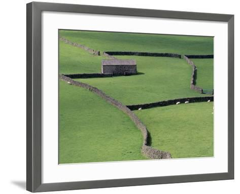 Stone Barn and Dry Stone Walls, Gunnerside, Swaledale, Yorkshire, England, United Kingdom-Jean Brooks-Framed Art Print