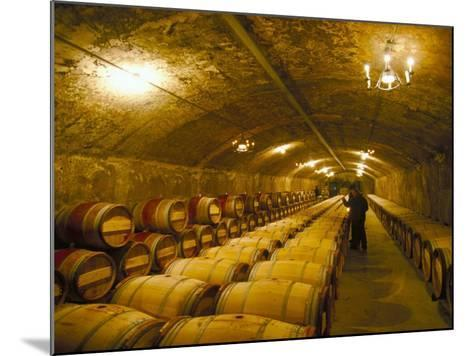 The Cellars, Chateau Lafitte Rothschild, Pauillac, Gironde, France-Michael Busselle-Mounted Photographic Print