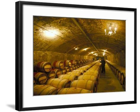 The Cellars, Chateau Lafitte Rothschild, Pauillac, Gironde, France-Michael Busselle-Framed Art Print