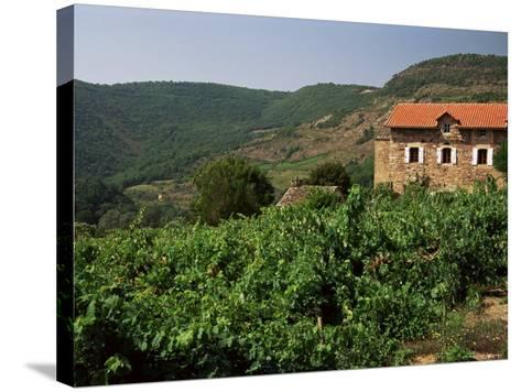 Farmhouse Near Millau, Aveyron, Midi Pyrenees, France-Michael Busselle-Stretched Canvas Print