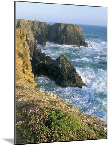Pointe De Port Coton, Belle Ile En Mer, Breton Islands, Morbihan, Brittany, France-Bruno Barbier-Mounted Photographic Print