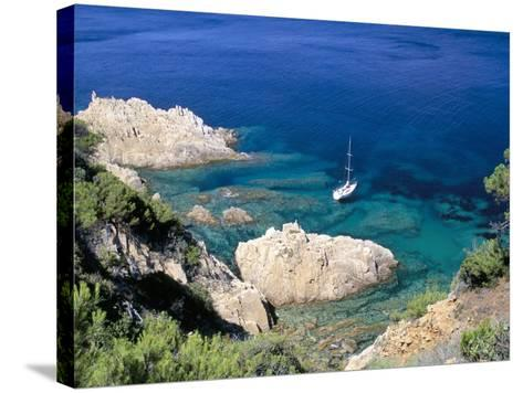Corniche of Cap Camarat, Close to the Isle of Saint Tropez, Var, Provence-Bruno Barbier-Stretched Canvas Print