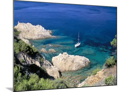 Corniche of Cap Camarat, Close to the Isle of Saint Tropez, Var, Provence-Bruno Barbier-Mounted Photographic Print