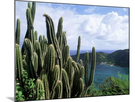 View from Fort Napoleon, Terre-De-Haut, Les Saintes, off Guadeloupe, French Antilles-Bruno Barbier-Mounted Photographic Print