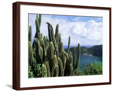 View from Fort Napoleon, Terre-De-Haut, Les Saintes, off Guadeloupe, French Antilles-Bruno Barbier-Framed Art Print